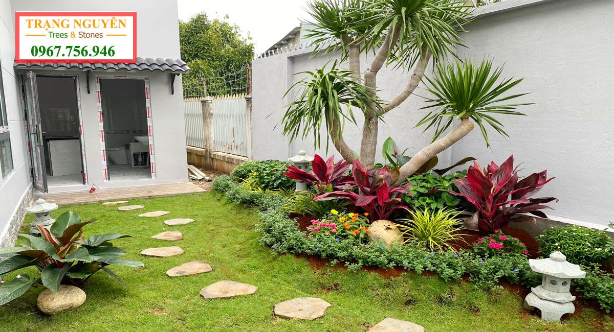 Thiết kế thi công sân vườn biệt thự