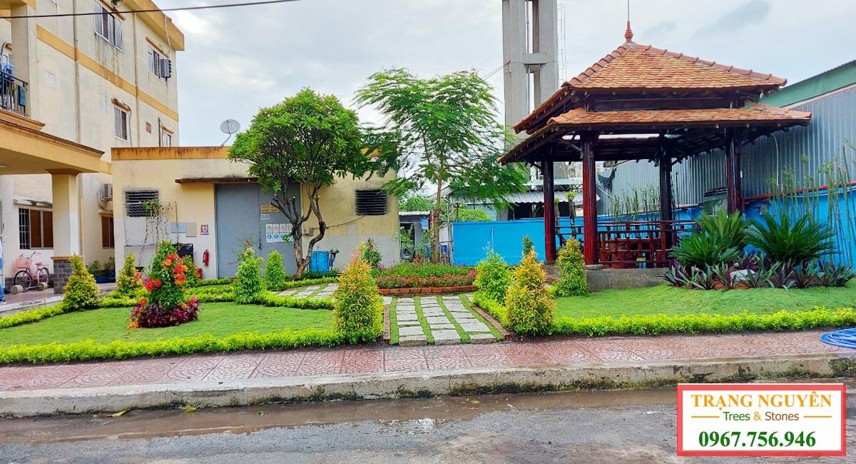 Sân vườn hoàn thành 4
